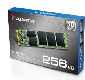 ADATA SU800 256GB SSD M2 2280 3D NAND